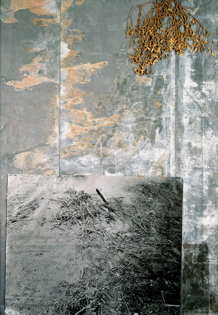 Anselm Kiefer - Das Balder-Lied, 1977-88, original photograph and mistletoe on treated lead in a glazed steel frame