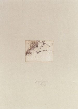 Joseph Beuys - Hirschkopf aus der Suite Tränen, 1985, etching on thin paper laid down on white wove