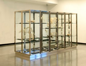 Damien Hirst - Something Solid Beneath the Surface of All Creatures Great and Small, 2001, glass, stainless steel, nickel, brass, rubber, painted and lacquered MDF and animal skeletons
