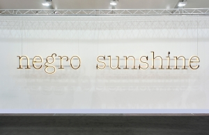 Glenn Ligon - Warm Broad Glow II, 2011, neon, paint, and powder coated aluminum